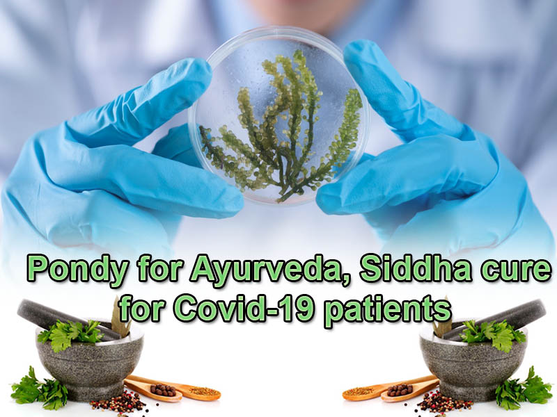 Pondy for Ayurveda, Siddha cure to Covid-19 patients