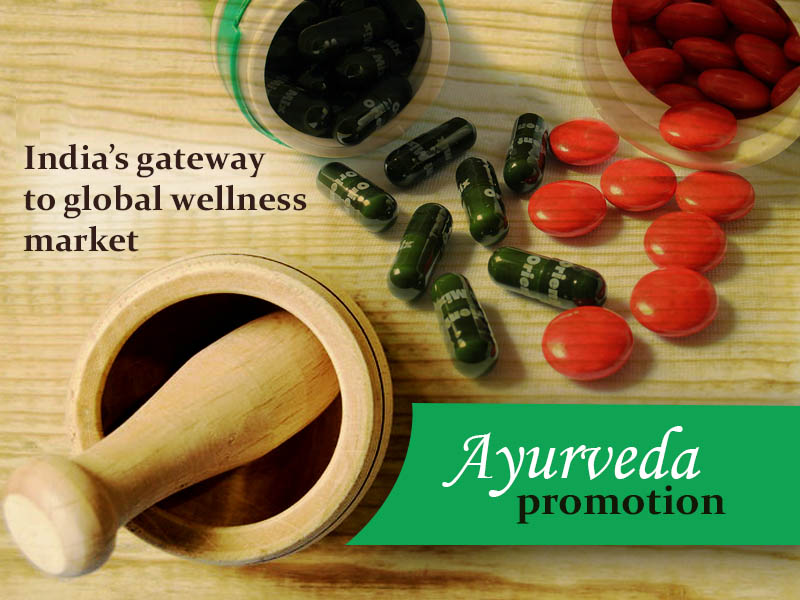 'Ayurveda promotion must to win global market for natural remedies'