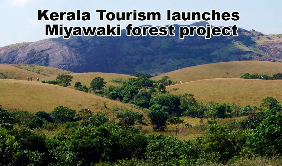 Kerala Tourism launches Miyawaki forest project in 22 spots