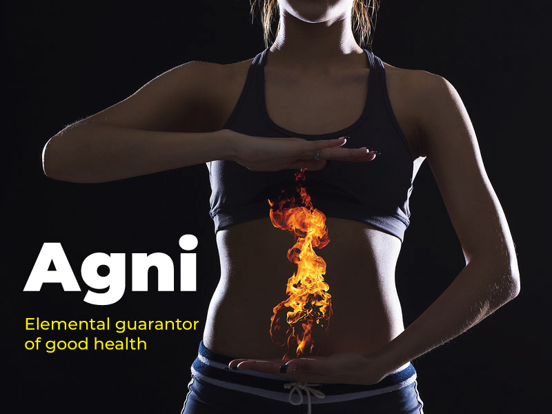 Agni Elemental guarantor of good health
