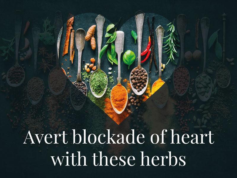Avert blockade of heart with these herbs